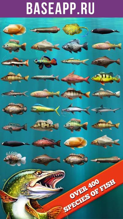 Онлайн Рыбалка
